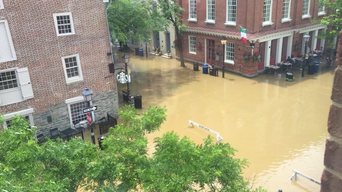 Alexandria is already often waterlogged  How will it adjust