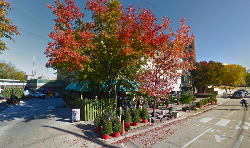 Johnson S Florist And Garden Center In Dc Image Made With Google Maps