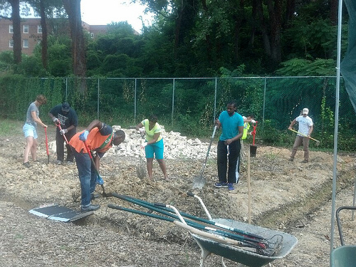 Hillcrest residents turn tennis courts into gardens – Greater ...