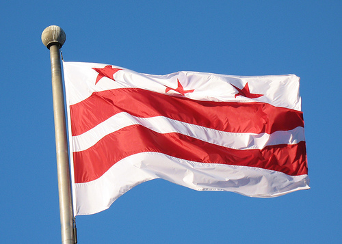 Image result for picture of washington dc flag