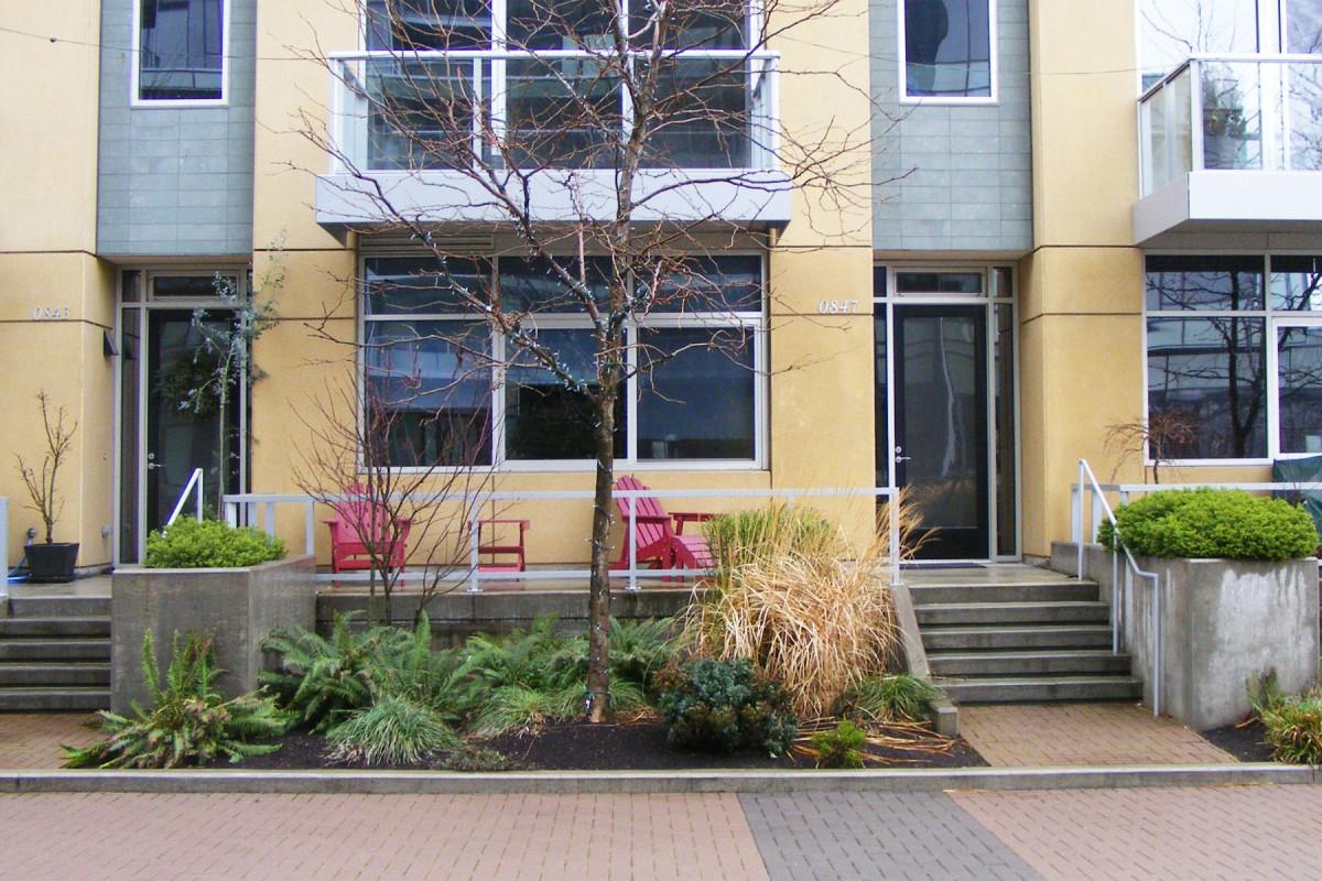 Low Maintenance Apartment Plants